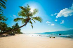 Traumurlaub unter karibischer Sonne